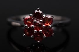 Silberring mit abendroten Rubinen