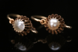 Delicate golden earrings with mother of pearl