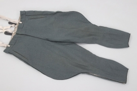 Heer Pionier officer's breeches