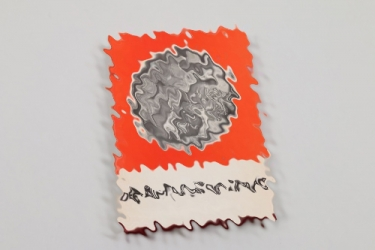 "Book ""Der Blutorden der NSDAP"""