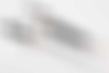 "RLB leader's dagger with hanger ""Witte"" - 1st pattern"