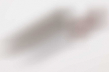"NPEA Service Dagger for teacher ""Eickhorn"" - NAPOLA"