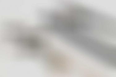 Heer Kav.Rgt.5 etched parade sabre (EM) - Eickhorn