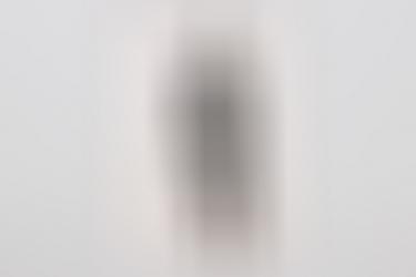 Heer portrait photo of a paratrooper