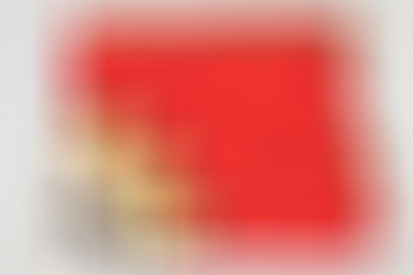 """Deutsche Arbeitsfront """"Kriegs-Musterbetrieb"""" flag - 142x130"""
