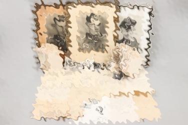 Olt. Alfred Schneider - Knight's Cross grouping (Geb.Jäg.Rgt.206)