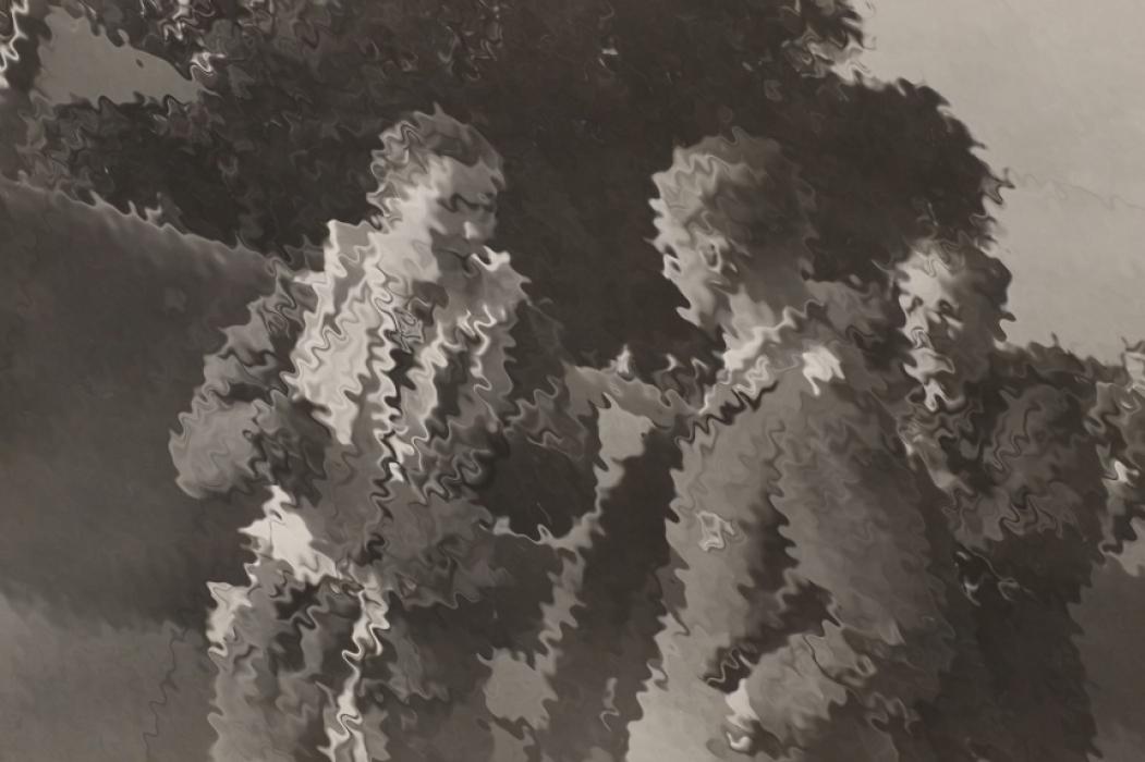 Kriegsberichterstatter Harry Gehm - photos & documents